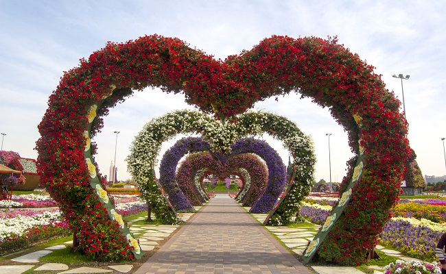 650x400_Dubai Miracle Garden 3
